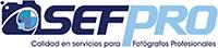 SEFPRO Blog
